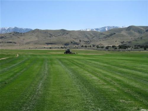 Land Nestled Against Mountains : Goshen : Utah County : Utah