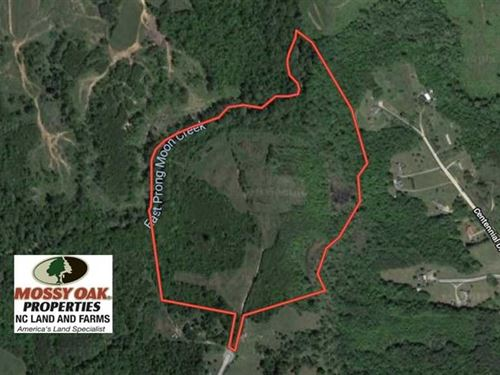 Under Contract, 52 Acres of Hunti : Yanceyville : Caswell County : North Carolina
