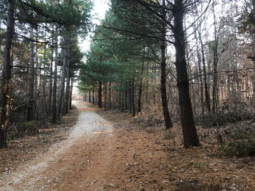 Hunting Property Bollinger County : Patton : Bollinger County : Missouri