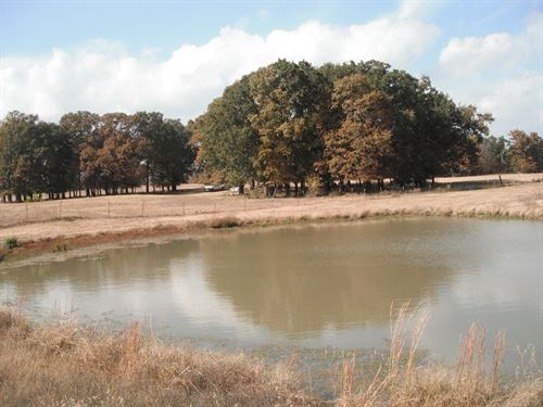 17 Acres Hugo Oklahoma Deer Hunters : Hugo : Choctaw County : Oklahoma