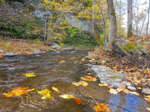 132A, Picturesque Creek, Waterfall : Hampshire : Lewis County : Tennessee