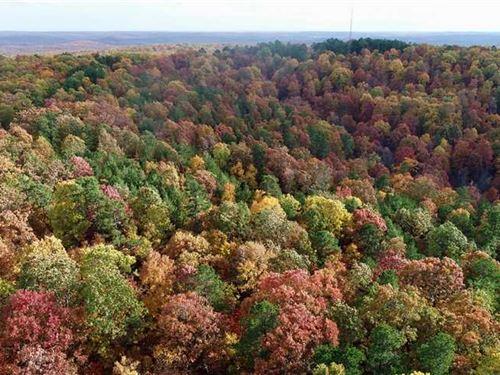 80 Acres in Washington CO With Acc : Potosi : Washington County : Missouri