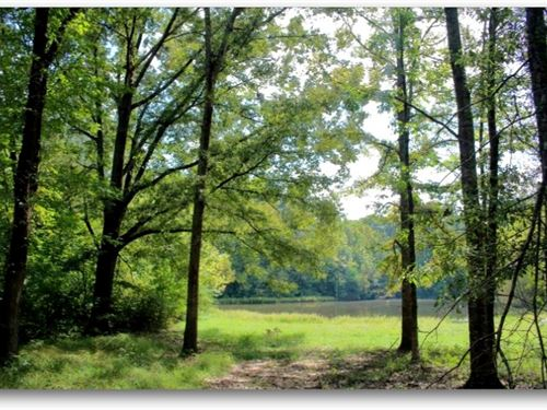48 Acres In Hinds County In Byram : Byram : Hinds County : Mississippi