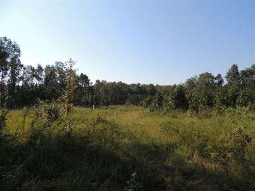 54.45 Ac Hwy, 208 & Buckner Road : Junction City : Talbot County : Georgia