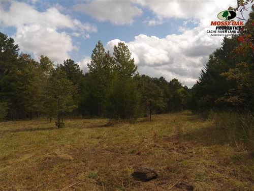 Farm/Ranch/Residential 80 Ac, Conc : Concord : Cleburne County : Arkansas