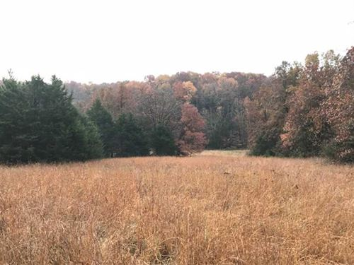 Price Lowered, Rub Central 40 Acre : Stover : Morgan County : Missouri