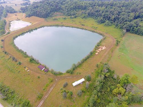 Happydale Rd, 60 Acres : Cambridge : Guernsey County : Ohio