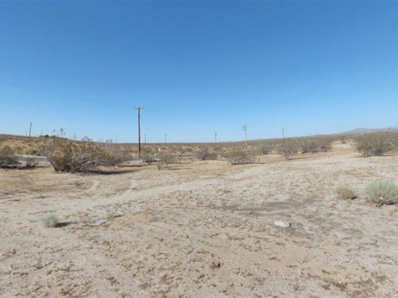 10 17 Acres In Lancaster, Ca : Ranch for Sale by Owner