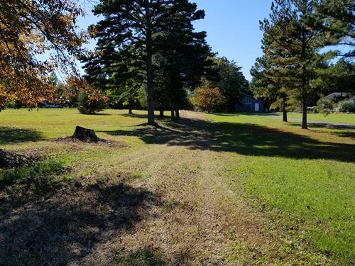 Great Property Timber & Wildlife : Hurt : Pittsylvania County : Virginia