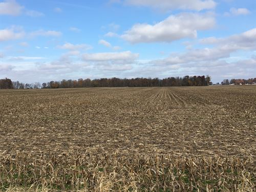 Productive Ohio Farmland With Woods : Arcanum : Darke County : Ohio