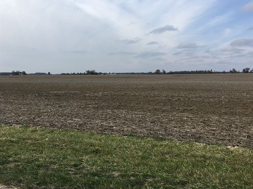 Productive Ohio Farmland : Arcanum : Darke County : Ohio