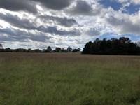 39 Acres Hobby Farm Judsonia : Judsonia : White County : Arkansas
