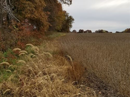 Online Only Farm Land Auction : Brookfield : Linn County : Missouri