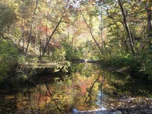 263-Acres on Noblett Creek For Sale : Willow Springs : Howell County : Missouri