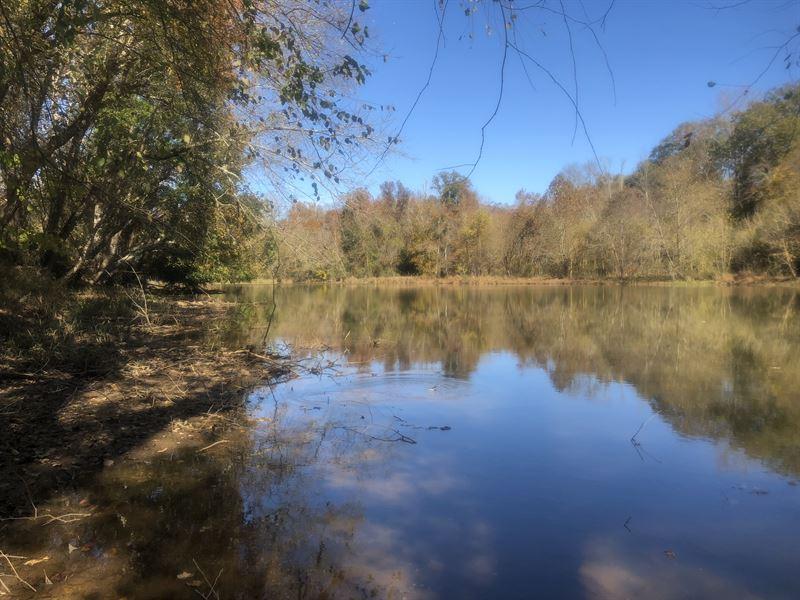 Saluda River Development Tract : Ranch for Sale : Piedmont : Anderson  County : South Carolina