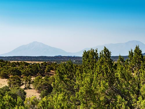 Homesite Near Blm Land : Walsenburg : Huerfano County : Colorado