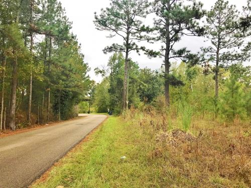 25.5 Acres Development Land For Sal : Hattiesburg : Lamar County : Mississippi