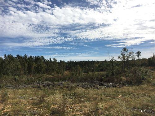 Land CR 5233, McCool, MS 39108 : McCool : Attala County : Mississippi