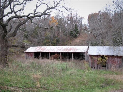 Awesome Wooded Building Site Paved : Laquey : Pulaski County : Missouri