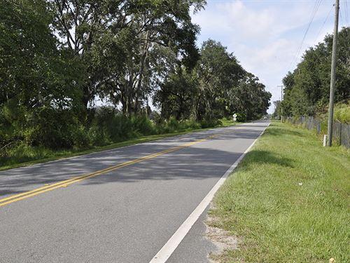 South Lake Toho Community : Kissimmee : Osceola County : Florida