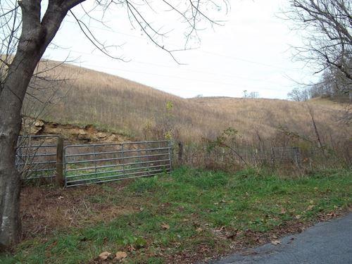 Mountain View Farm Land Meadowview : Meadowview : Washington County : Virginia