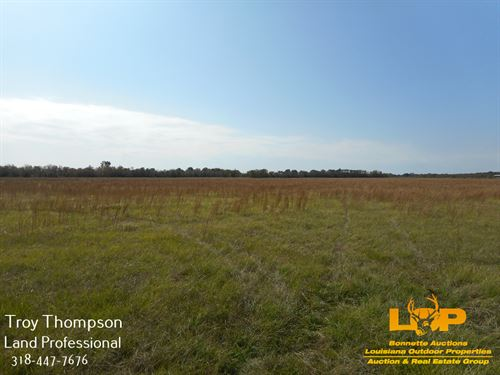 32.86 Acres Commercial : Marksville : Avoyelles Parish : Louisiana