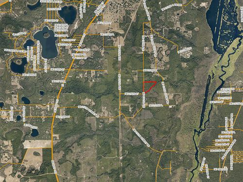 Fort McCoy Recreational Tract : Fort McCoy : Marion County : Florida
