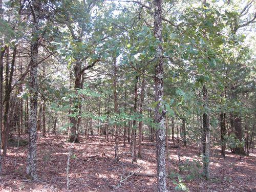 Land Bull Shoals Lake, 40 Acres : Gainesville : Ozark County : Missouri