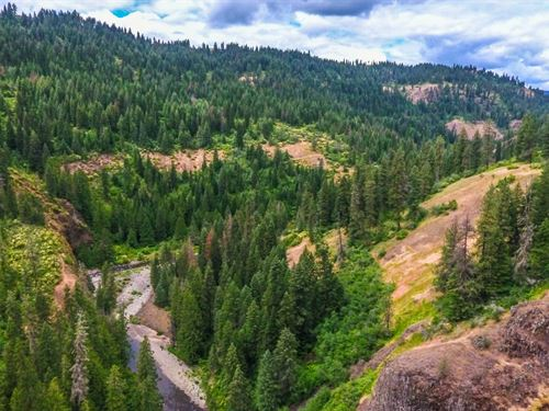 Recreation Property, River Frontage : Deary : Latah County : Idaho