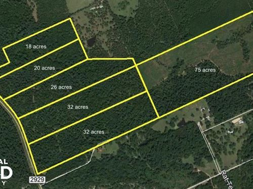 Large Wooded Ranchettes, 75 : Huntsville : Walker County : Texas