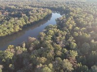 Ouachita River Camp Site Potential : Strong : Union County : Arkansas
