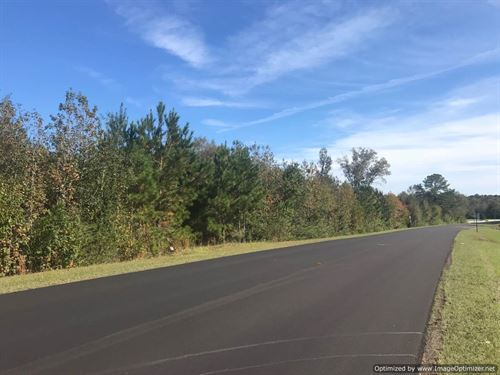 Developer's Dream : Wesson : Copiah County : Mississippi