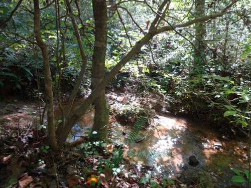 24.50 Acres, Great Views With : Pickens : South Carolina