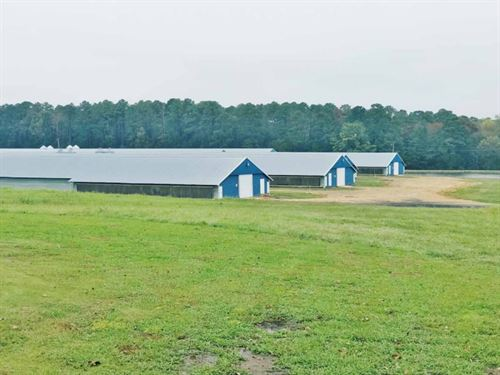 6 Premium New Broiler Houses Home : Louin : Smith County : Mississippi