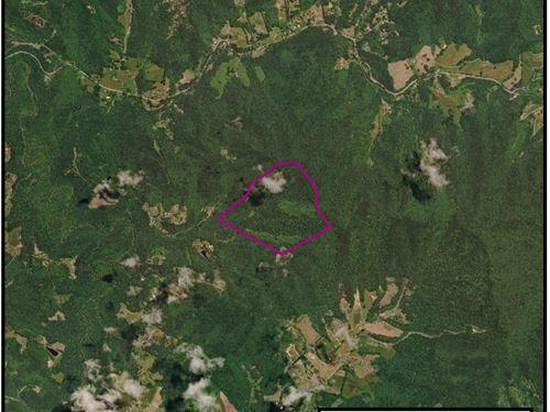 106 Acre Parcel In Raleigh County : Glen Daniel : Raleigh County : West Virginia