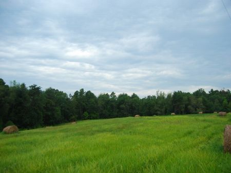 11 Acre Tract In Upstate Sc : Chesnee : Spartanburg County : South Carolina