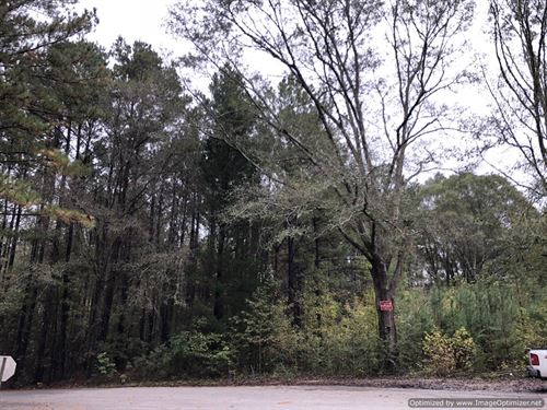 Marketable Timber Tract : Braxton : Simpson County : Mississippi