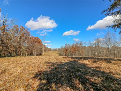 Scott Rd, 22 Acres : New Marshfield : Athens County : Ohio
