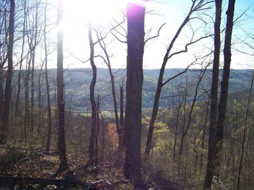 52.54+/-Acres With Panoramic Views : South Pittsburg : Marion County : Tennessee