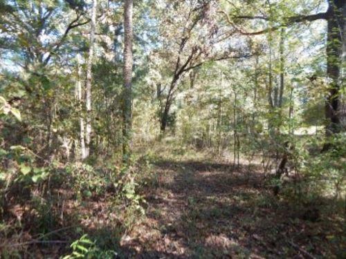 15.65 Acres In Rankin County In Bra : Brandon : Rankin County : Mississippi