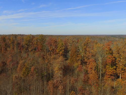 Over 2,200 Acres : Linden : Perry County : Tennessee