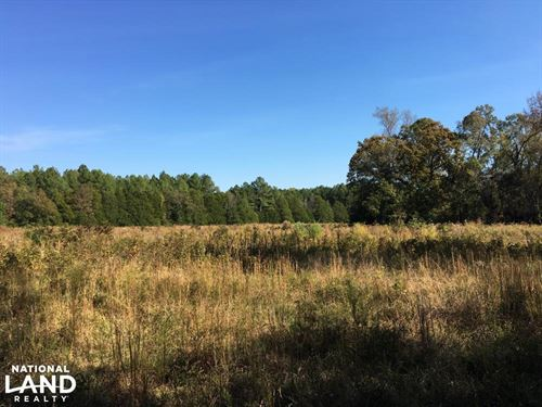 Reids Creek Woodlands And Fields : Abbeville : South Carolina