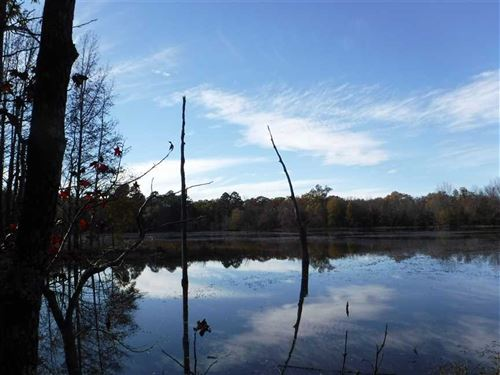 105 Acres of Recreational Timb : Casa : Perry County : Arkansas