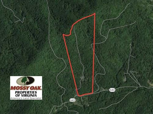 53 Acres of Residential And Huntin : Monroe : Amherst County : Virginia