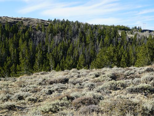 Slate Creek Lot 4 : Lander : Fremont County : Wyoming