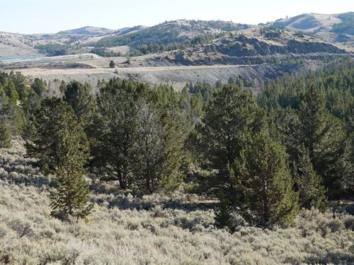 Slate Creek Lot 5 : Lander : Fremont County : Wyoming