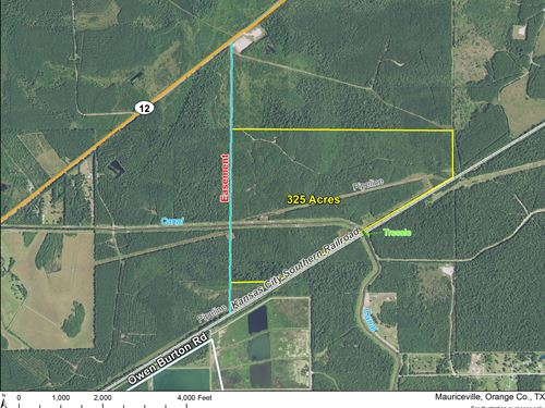 325 Ac Hwy 12 : Mauriceville : Orange County : Texas