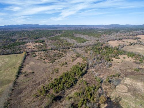 Hunting Recreation Property : Story : Montgomery County : Arkansas