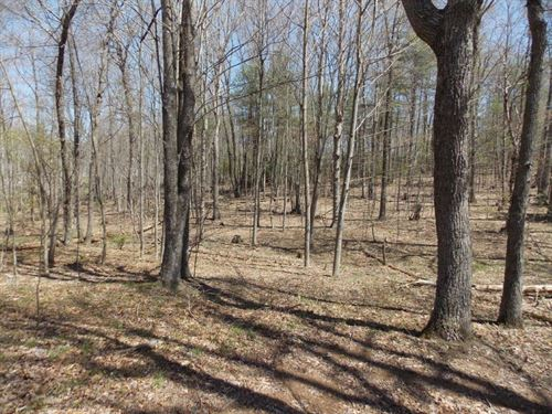 Hunting & Recreational Property : Willis : Floyd County : Virginia