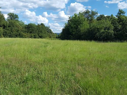 Ranch Land For Sale, Se Oklahoma : Talihina : Pushmataha County : Oklahoma